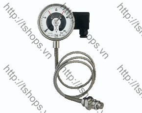 All Stainless Steel Pressure Gauge with All Stainless Steel Pressure Gauge with In-Line Diaphragm Diaphragm MAN-RF..M1..DRM-620