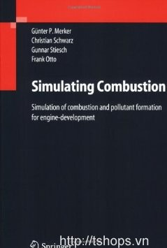 Simulating Combustion