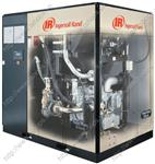 Máy nén khí không dầu IR 37-160 kW / 50-200 hp VSD